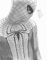 The Amazing Spider-man by Wanted75