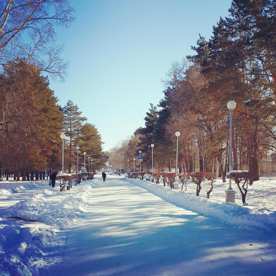Snow beauty by NinulyaKVN