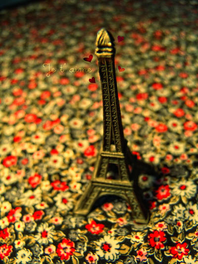 Je t aime... by cande-knd