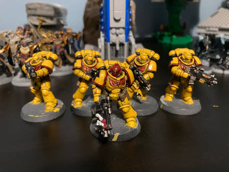 Fully varnished Imperial Fist squad