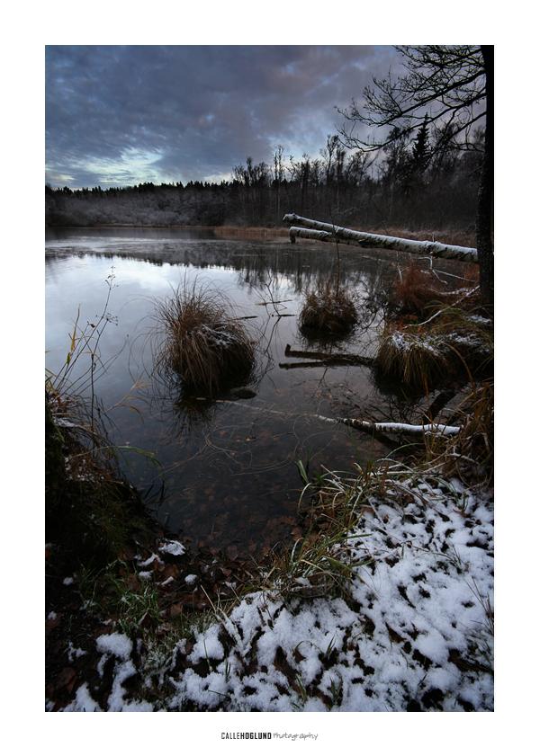 Snowy Morning V by CalleHoglund