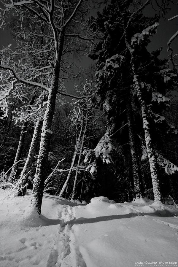 Snowy Night by CalleHoglund