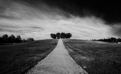 The Woodland Cemetery by calleartmark