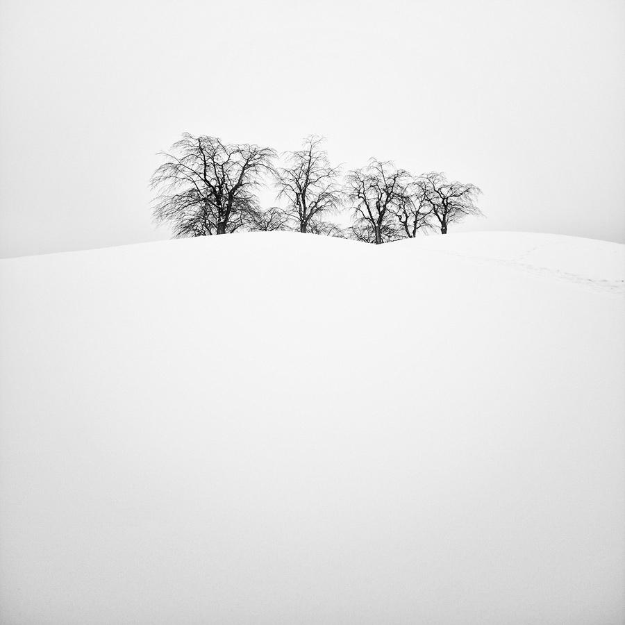 Minima Series III by CalleHoglund