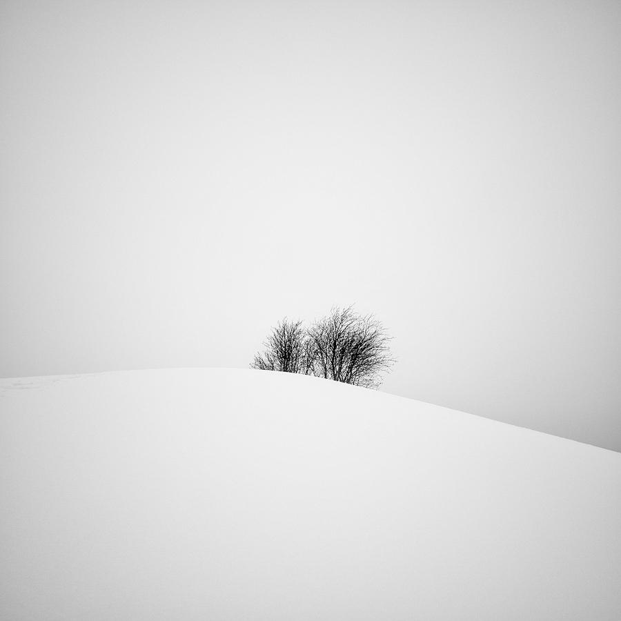 Minima Series I by CalleHoglund