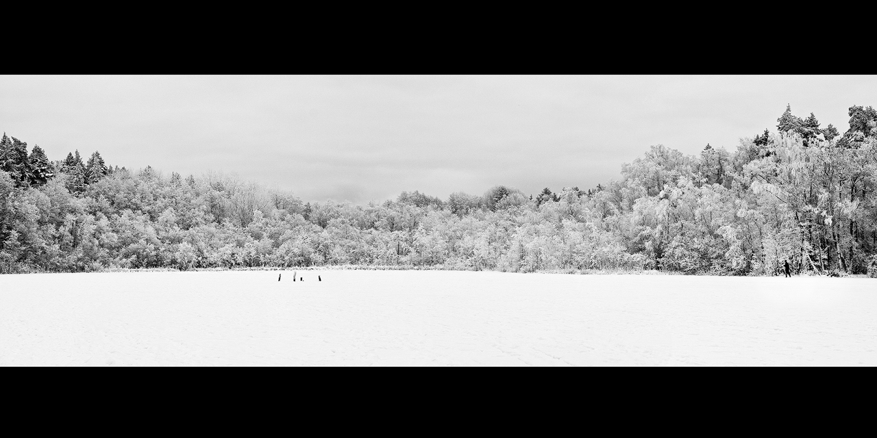 Winter Pano by CalleHoglund