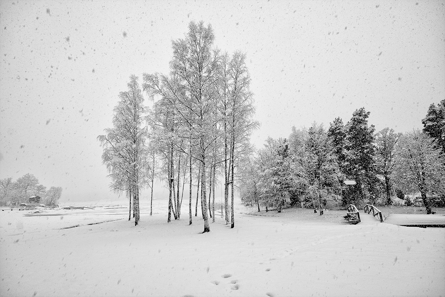 Sometimes It Snows In April by CalleHoglund