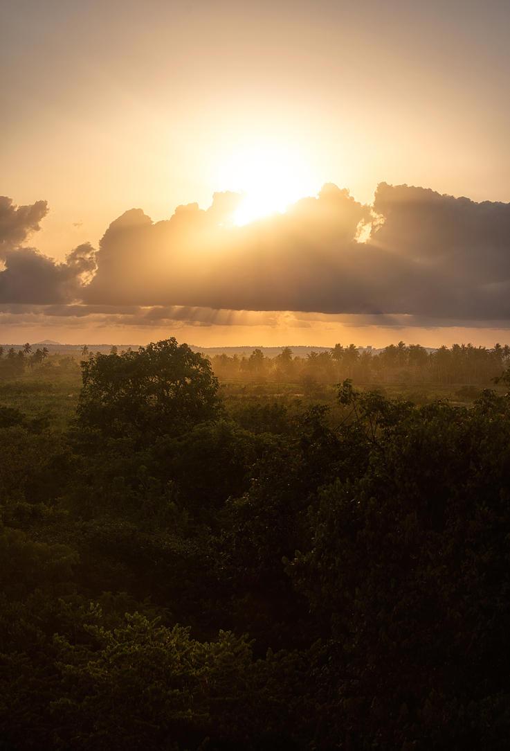 Sun sets in Kenya by CalleHoglund