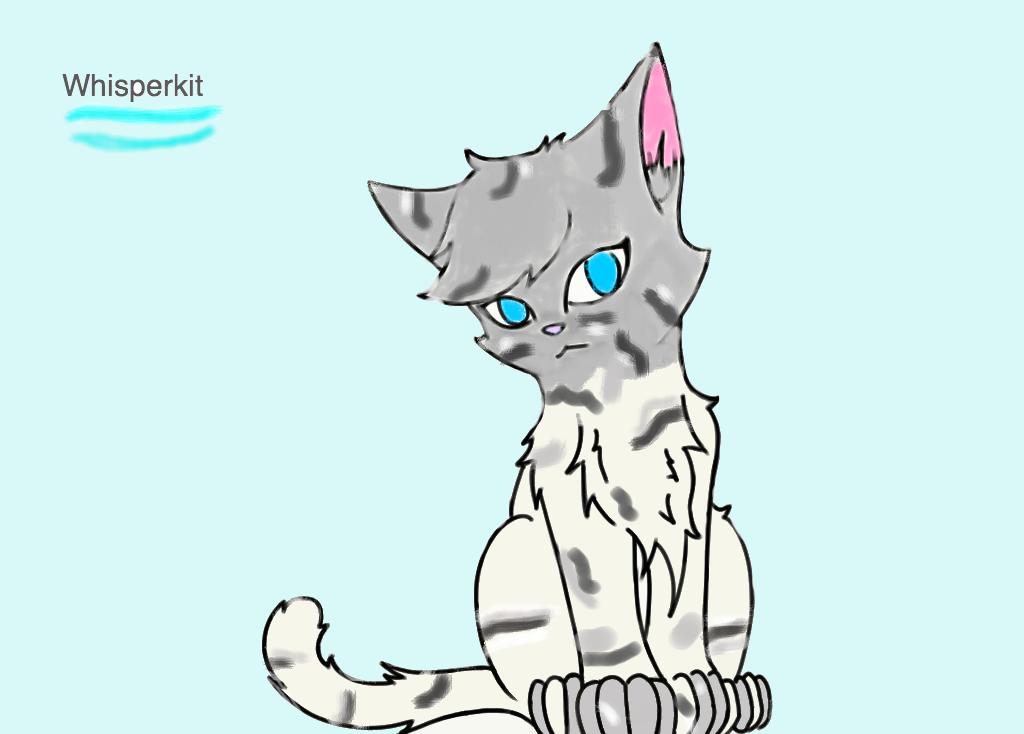 Warrior Cat Apprentice Base