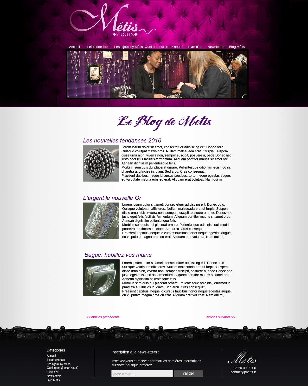 Metis Web design by Hybrid-creation