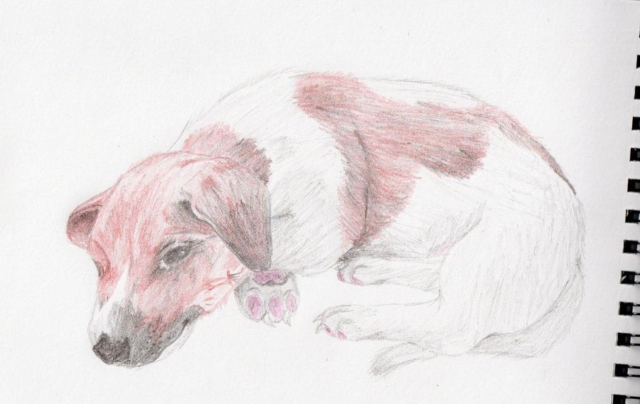 Zeru's Artwork Eight___sketch_by_xsilverhybridx-d39wdaq