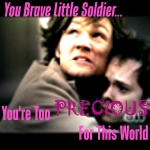 Sam's Brave Little Soldier by FadingLightOfGlory