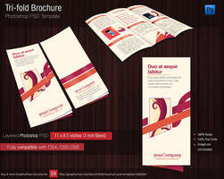 Tri Fold Brochure Photshop PSD Template for 1 USD by tinjothomasc