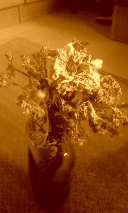 Beauty of Death - Sepia by Bozzenheim