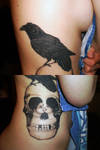 Raven with Skull optical illusion.