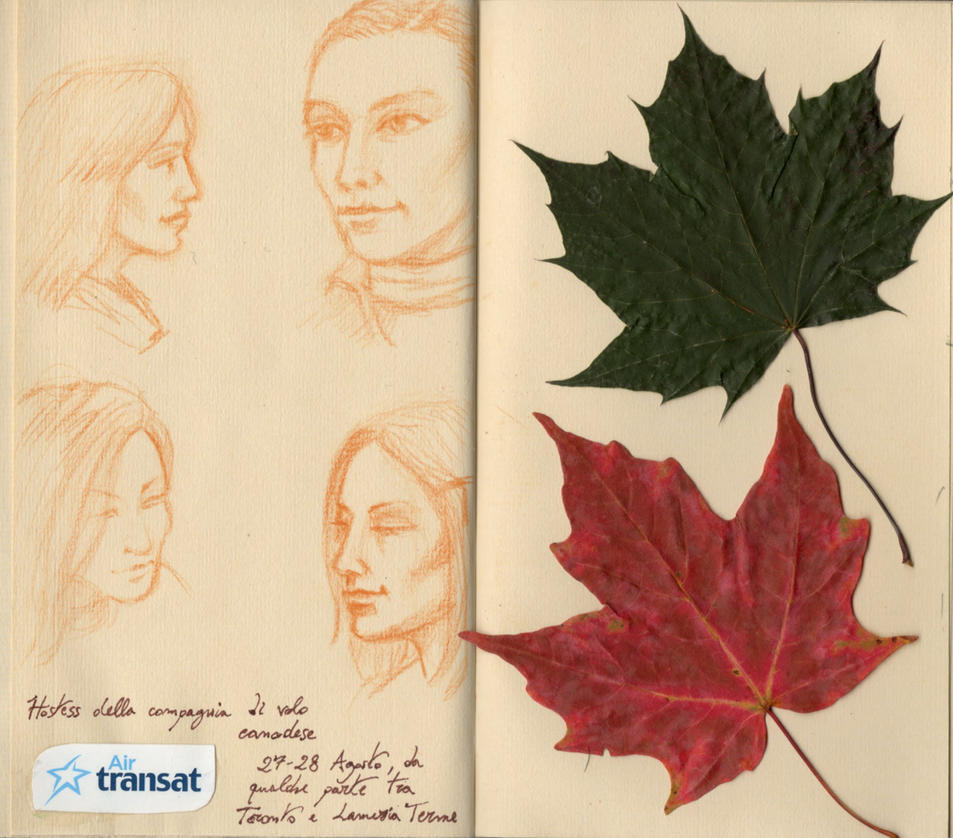Travel book from Canada 07 by Panaiotis