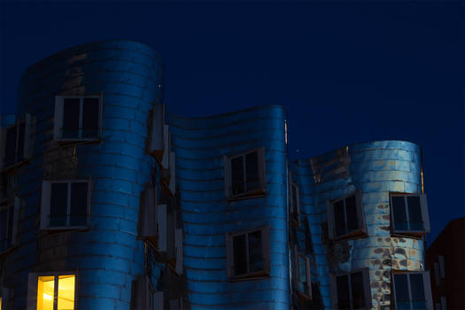 Silver Gehry House