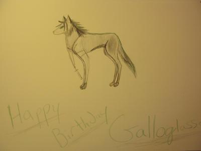 HAPPY BIRTHDAY GALLOGLASSES!!! by Wolfatheart24