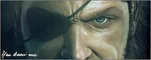 Metal Gear Signature