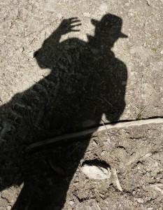 DaOldHorse's Profile Picture