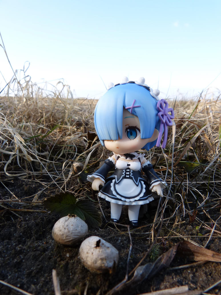 Rem observing fungi by DaOldHorse