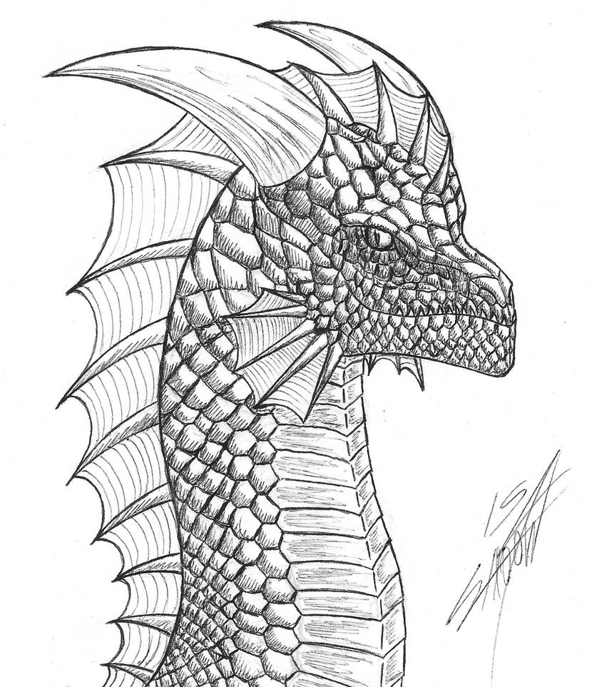 Dragon Concept by NightShadow154