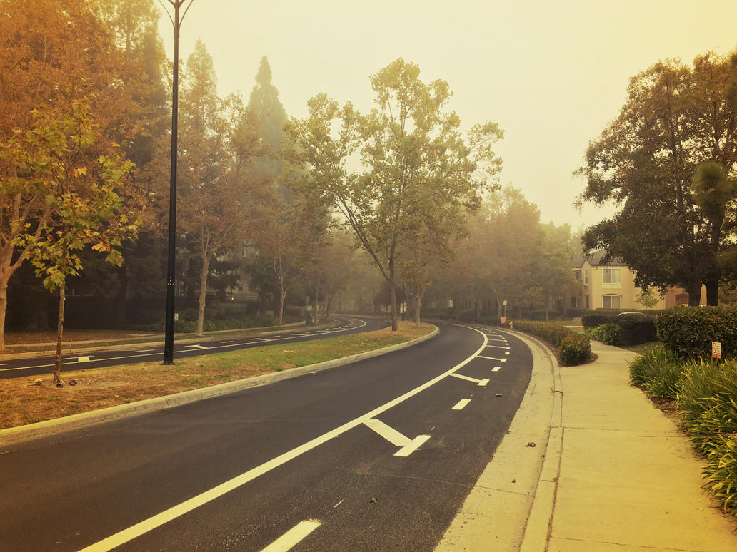 Foggy morning by DiMiles