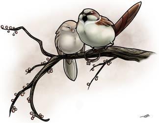 Love Birds by taa