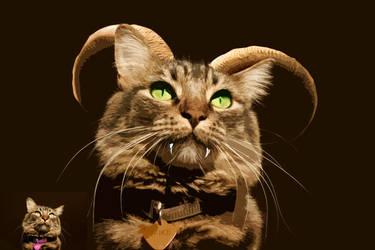 Cat Face- Spike