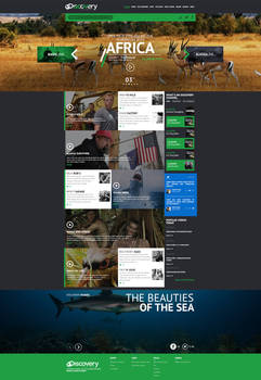 Web design - Discovery channel concept