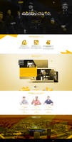 web design - Driks