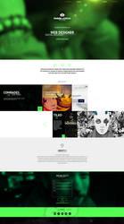 web design - Fishbein Bogdan by Shizoy