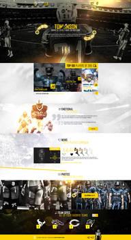 web design - NFL concept site