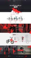 Animal Riders - Web Design