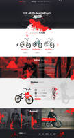 Animal Riders - Web Design by Shizoy