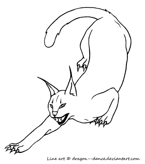 caracal free coloring pages Big Cat Coloring Pages  Caracal Coloring Page