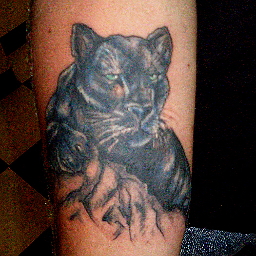 Panther Tattoo Lion Tattoos