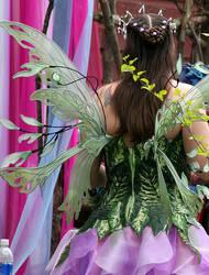 Green Fairy Wings by glittrrgrrl