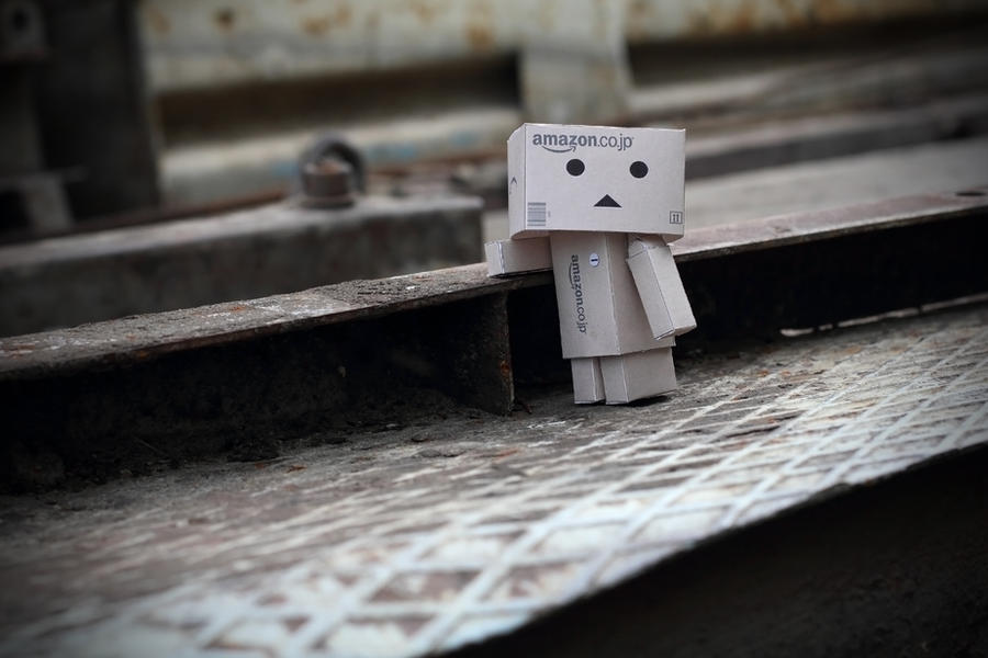 Danbo posing by lightlanaskywalker