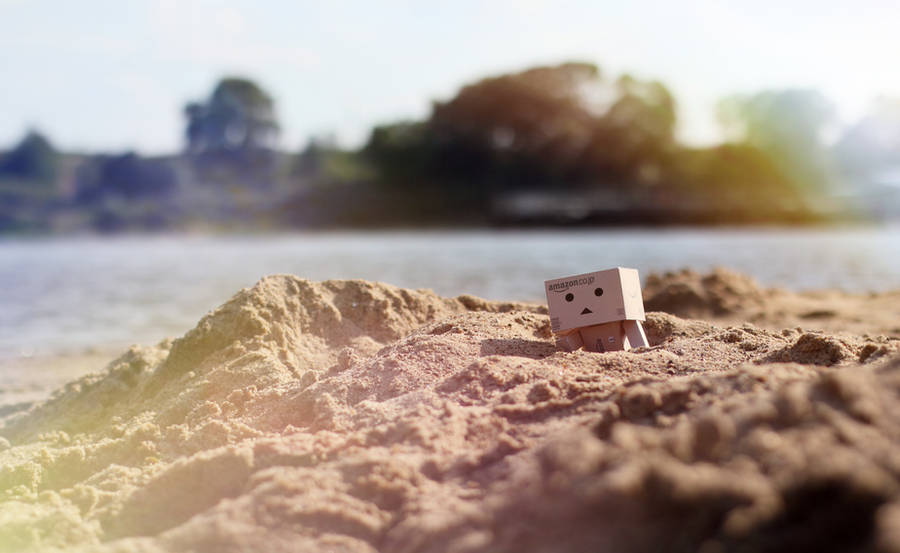 Danbo on the beach by lightlanaskywalker