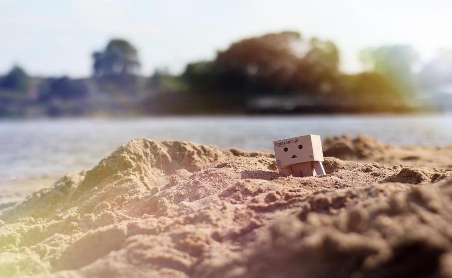 Danbo on the beach by lightlanaskywalker