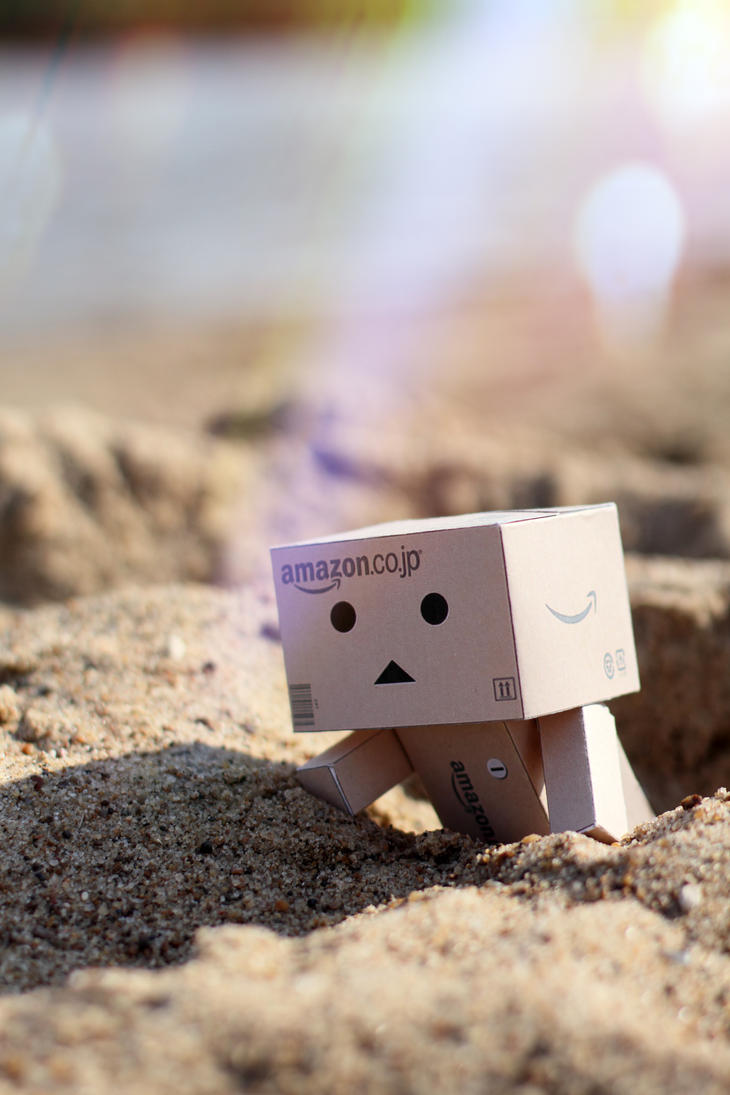 Danbo on the beach II by lightlanaskywalker