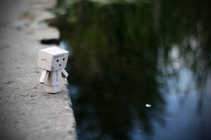 Danbo is afraid of water by lightlanaskywalker