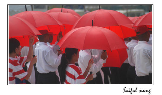 Red umbrella by saiful
