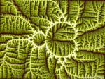 Mandelbrot Leaf