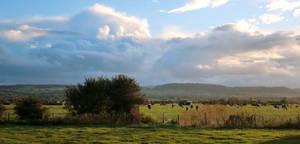 Landscape-cloudscape