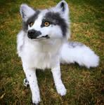 Sit, Good Fox!