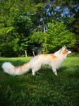 Sun glow fox full body (poseable art doll)