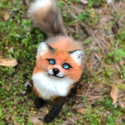 Red Fox kit says hello! (Poseable art doll)