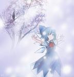 Cirno 2 - Beloved Ice Fairy